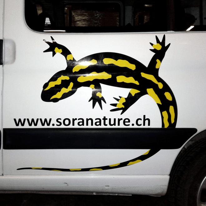 Camion-Soranature-Marquage-Publicitaire-Covering6